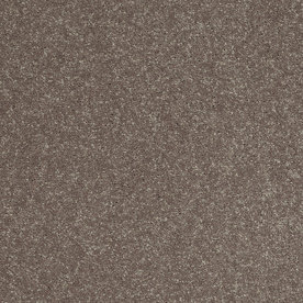 Shaw Brown/Tan Textured Indoor Carpet