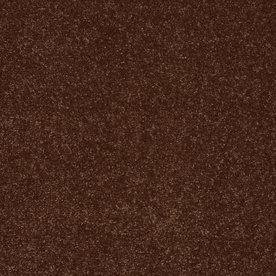 Shaw Cornerstone Collection Orange Textured Indoor Carpet