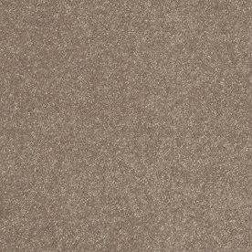 Shaw Brown Textured Carpet