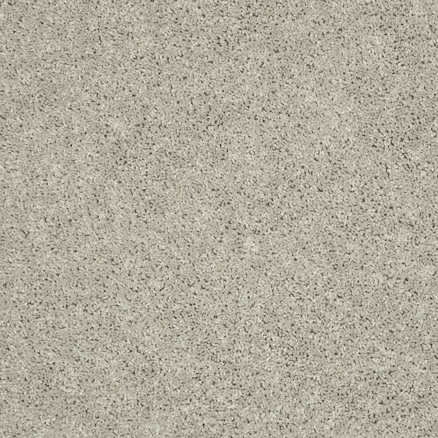Costco Carpet Shaw Review 2015 | Home Design Ideas