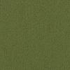 Shaw Commercial Green Berber Indoor Carpet