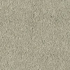 Shaw Essentials Soft and Cozy I - S Masonry Textured Indoor Carpet
