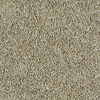 Shaw Essentials Soft and Cozy I- T Brushed Nickel Textured Indoor Carpet