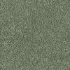 Shaw Essentials Soft and Cozy II- S Blue Grass Textured Indoor Carpet