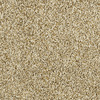 Shaw Essentials Soft and Cozy II - T Dunes Textured Indoor Carpet