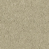 Shaw Essentials Soft and Cozy III - S Sand Swept Textured Indoor Carpet