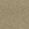 Shaw Essentials Soft and Cozy III - S Deer Field Textured Indoor Carpet