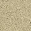 Shaw Essentials Soft and Cozy III - S Star Shine Textured Indoor Carpet