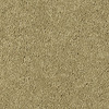 Shaw Essentials Soft and Cozy III - S Churn Textured Indoor Carpet