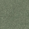 Shaw Essentials Soft and Cozy III - S Blue Grass Textured Indoor Carpet