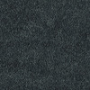 Shaw Essentials Soft and Cozy III - S Midnight Shade Textured Indoor Carpet