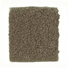 STAINMASTER PetProtect Greyhound - Feature Buy Calico Textured Indoor Carpet