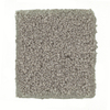 STAINMASTER PetProtect Great Dane - Feature Buy Siberian Textured Indoor Carpet