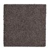 STAINMASTER Essentials Stone Peak I Raw Amethyst Textured Indoor Carpet