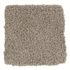 STAINMASTER TruSoft Tranquility Textured Indoor Carpet