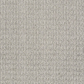 Shop STAINMASTER TruSoft Silver Mist Berber Carpet At