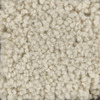 STAINMASTER TruSoft Subtle Beauty Cameo Glow Textured Indoor Carpet