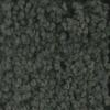 STAINMASTER TruSoft Subtle Beauty Juniper Textured Indoor Carpet