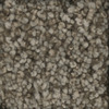 STAINMASTER TruSoft Dynamic Beauty 1 Scarecrow Textured Indoor Carpet