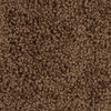 Shaw Workhorse Walnut Textured Indoor Carpet