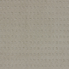 STAINMASTER TruSoft Glen Willow Cameo Glow Berber Indoor Carpet
