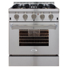 AGA Professional 4-Burner Convection Single Oven Dual Fuel Range (Stainless Steel) (Common: 30-in; Actual 30-in)