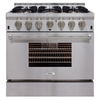 AGA Professional 6-Burner Convection Single Oven Dual Fuel Range (Stainless Steel) (Common: 36-in; Actual 36-in)