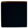 Interceramic 2-in x 2-in Black Ceramic Corner Bullnose Trim