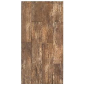 Interceramic 11-Pack Forestland Cypress Glazed Porcelain Indoor/Outdoor Floor Tile (Common: 6-in x 24-in; Actual: 5.91-in x 23.63-in)