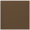 Interceramic 40-Pack 6-in x 6-in Brown Kiss Ceramic Wall Tile