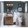 allen + roth Ballantyne Mocha with Ebony Glaze Traditional Bathroom Vanity (Common: 30-in x 21-in; Actual: 30-in x 21-in)