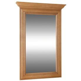 Style Selections Ryerson 25-in W x 34-in H Golden Rectangular Bathroom Mirror