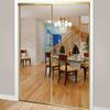 ReliaBilt Flush Mirror Sliding Closet Interior Door (Common: 48-in x 80-in; Actual: 48-in x 78-in)