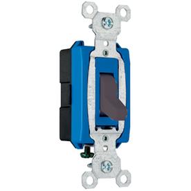 Pass & Seymour/Legrand 15-Amp Black Light Switch
