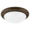 Sea Gull Lighting Misted Bronze Finish Ceiling Fan Light Kit
