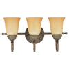 Sea Gull Lighting 3-Light Brandywine Antique Bronze Bathroom Vanity Light