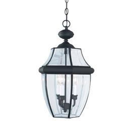 Sea Gull Lighting 20.75-in H Black Outdoor Pendant Light