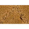 Royalty Carpet Mills Active Family Connections Tan/Brown Cut and Loop Indoor Carpet