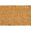 Royalty Carpet Mills Active Family Savannah Tan/Brown Saxony Indoor Carpet