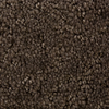 STAINMASTER Active Family Panorama Tan/Brown Fashion Forward Indoor Carpet