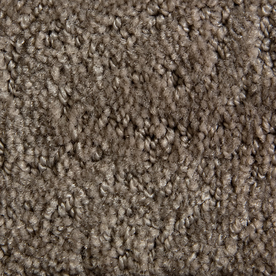 STAINMASTER Active Family Gallery Tan Pattern Indoor Carpet