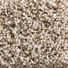 STAINMASTER Active Family Canal Monsoon Textured Indoor Carpet
