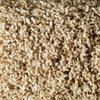 STAINMASTER Active Family Canal Tan/Brown Textured Indoor Carpet