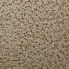 STAINMASTER Active Family Feature Buy El Morro Pattern Indoor Carpet