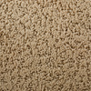 STAINMASTER Active Family Feature Buy Balboa Island Pattern Indoor Carpet