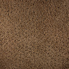 Royalty Carpet Mills Active Family Calypso Spirit Fashion Forward Indoor Carpet