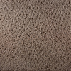 Royalty Carpet Mills STAINMASTER Active Family Gallery Version Fashion Forward Indoor Carpet
