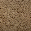 Royalty Carpet Mills STAINMASTER Active Family Gallery Glee Fashion Forward Indoor Carpet