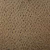 Royalty Carpet Mills STAINMASTER Active Family Gallery Electric Fashion Forward Indoor Carpet