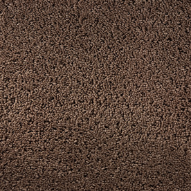 Royalty Carpet Mills STAINMASTER Active Family Gallery Inward Fashion Forward Indoor Carpet